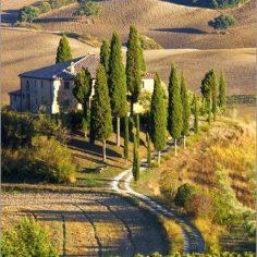 Eine Freie Trauung in Italien ist für viele ein großer Wunsch!